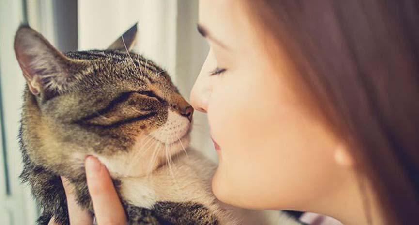 """Da li slušajte šta vam mačke  """"govore"""""""